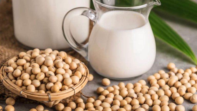 Cara Membuat Susu Kedelai Untuk Diet
